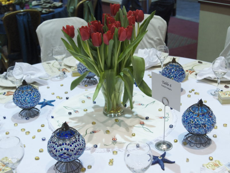 2009 Mediterranea Odyssey POP Table 6