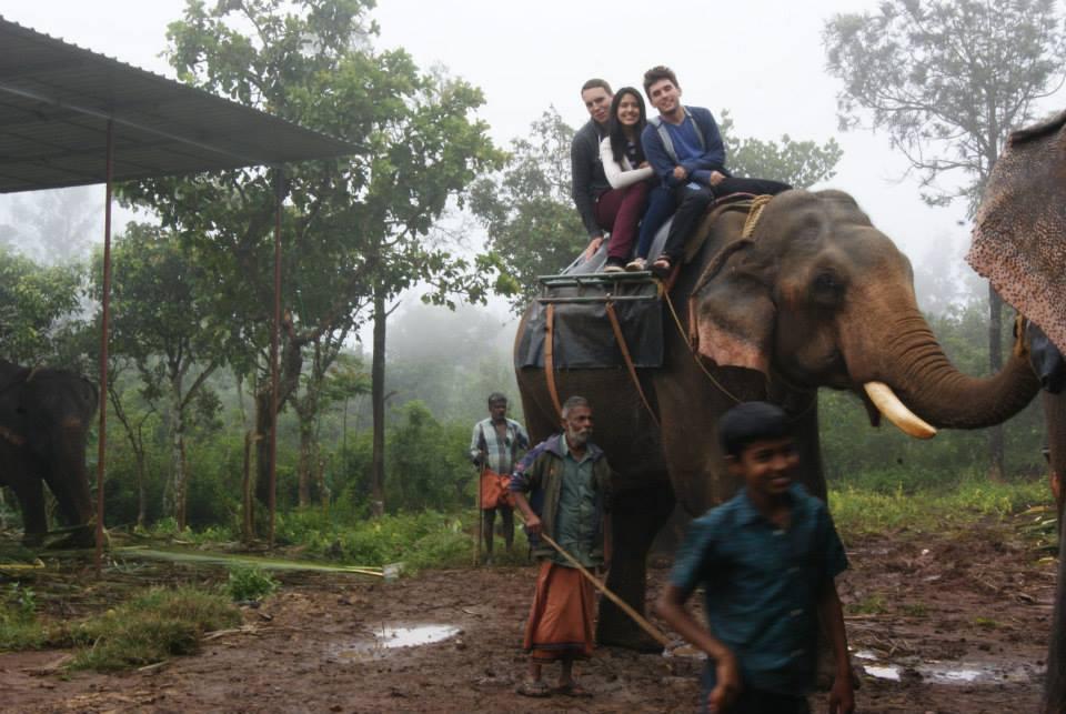Nate Elephant pic4